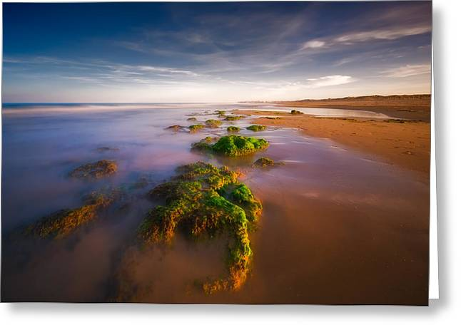 Beach Landscape Greeting Cards - Seaside Greeting Card by Piotr Krol (bax)