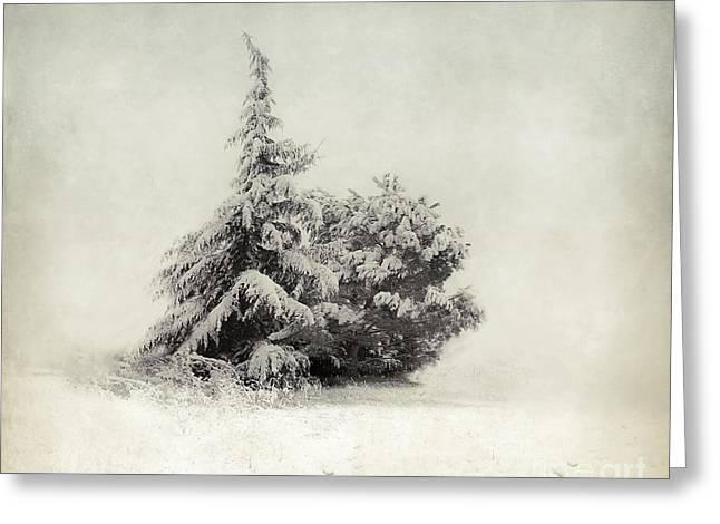 Snow Tree Prints Greeting Cards - Season Greetings Greeting Card by Rose Saint Leger