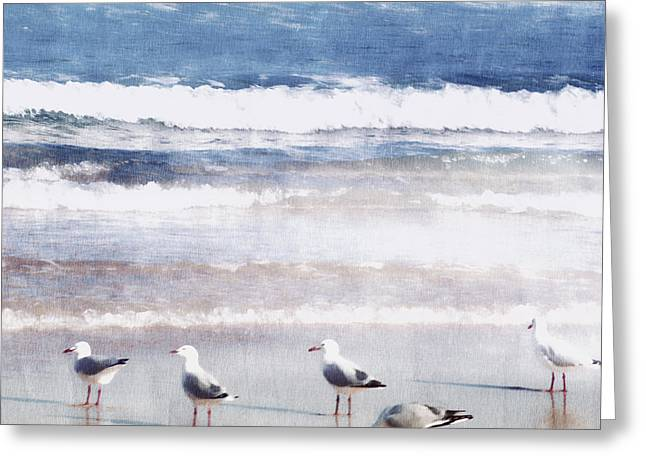 Seagulls Digital Greeting Cards - Seaspray Greeting Card by Holly Kempe