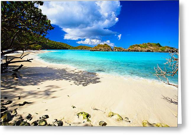 Tropical Oceans Greeting Cards - Secluded  Beach Greeting Card by George Oze