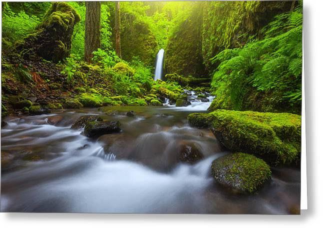 Metal Art Photography Greeting Cards - Seclusion Greeting Card by Darren  White
