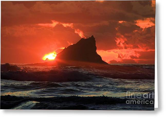 Recently Sold -  - Reflection In Water Greeting Cards - Second Beach Shark Greeting Card by Adam Jewell