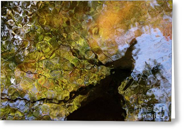 Glassy Lake Surface Greeting Cards - Second Earth Greeting Card by Joanne Baldaia - Printscapes
