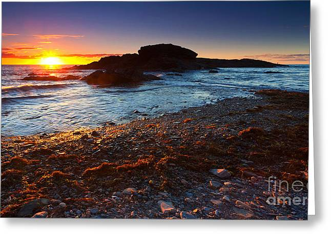 Sunset Seascape Greeting Cards - Second Valley Sunset Greeting Card by Bill  Robinson