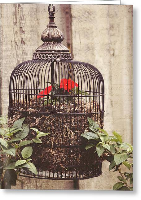 Jordan Mixed Media Greeting Cards - Secret Garden Art - You Have The Power Greeting Card by Jordan Blackstone