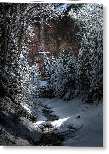 Secret Snow Greeting Card by Allen Lefever