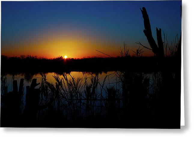 Beauty Mark Greeting Cards - Secret Sunset Greeting Card by Mark Andrew Thomas