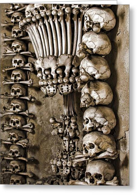Osteology Greeting Cards - Sedlec Skeleton Chalice Greeting Card by Heather Applegate