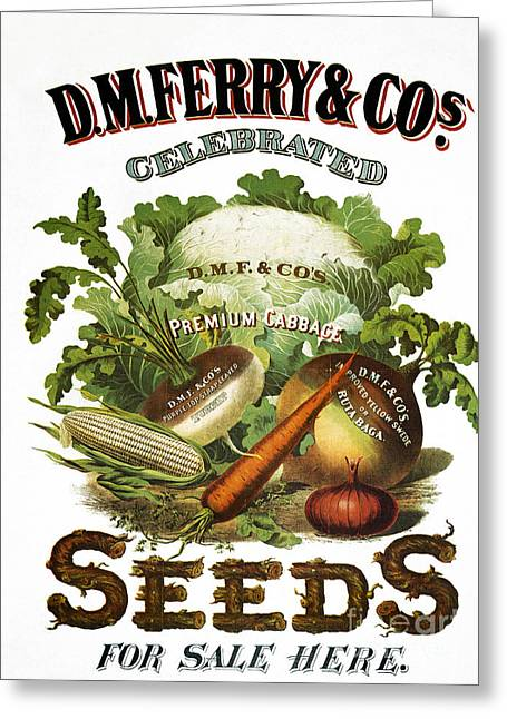 1880s Greeting Cards - SEED COMPANY POSTER, c1800 Greeting Card by Granger