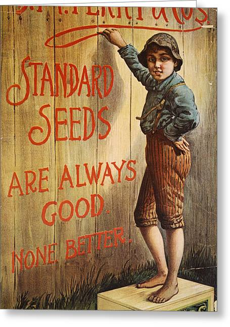 Tom Boy Photographs Greeting Cards - SEED COMPANY POSTER, c1890 Greeting Card by Granger