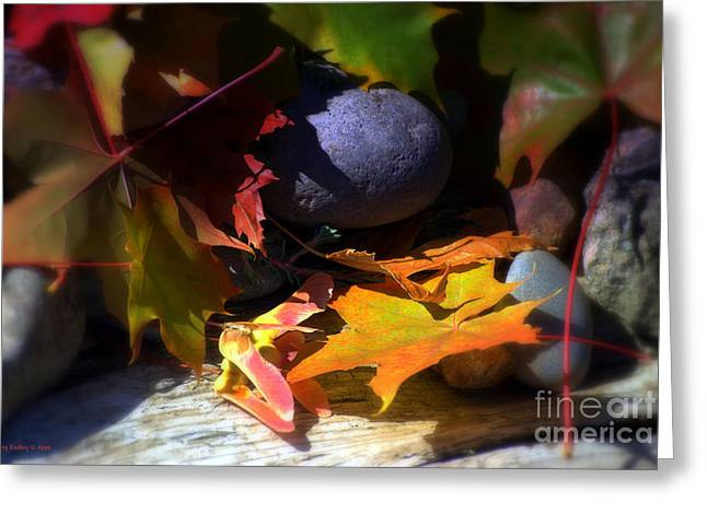 Foliage Photographs Greeting Cards - Seed Greeting Card by Larry Keahey