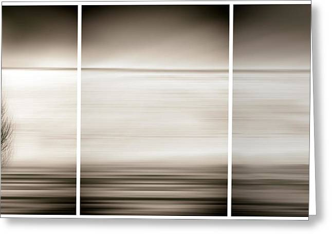 Blur Greeting Cards - Seeking The Invisible Greeting Card by Paulo Abrantes