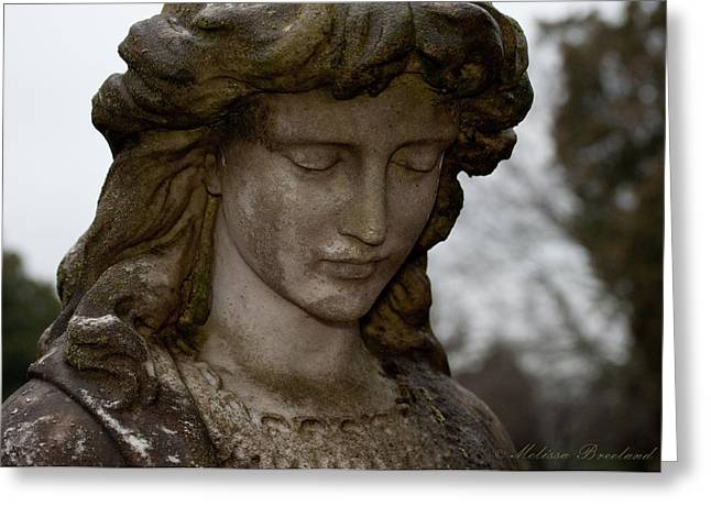 Maiden Greeting Cards - Selected Maiden Greeting Card by Melissa Wyatt