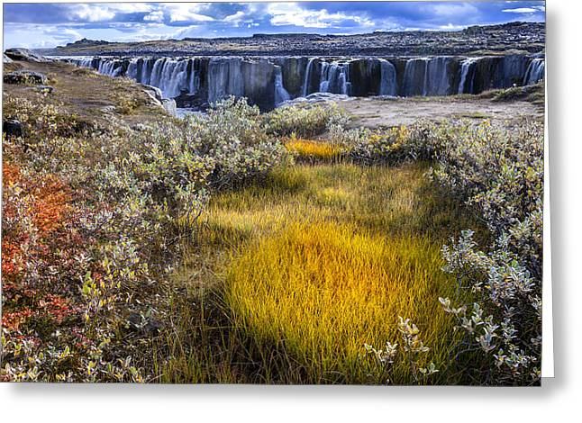 Power Plants Greeting Cards - Selfoss waterfall Greeting Card by Alexey Stiop
