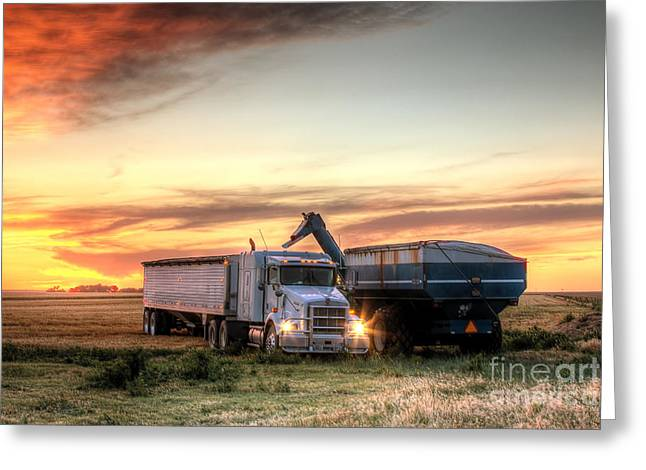 Harvested Greeting Cards - Semi Truck Unload Greeting Card by Thomas Zimmerman