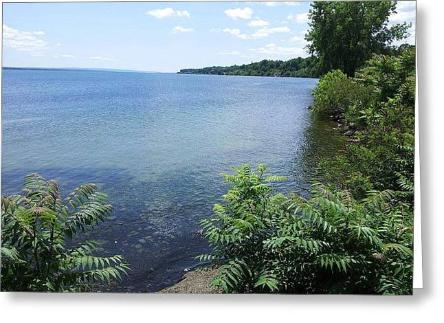 Splish Splash Greeting Cards - Seneca Lake Greeting Card by Charlotte Gray