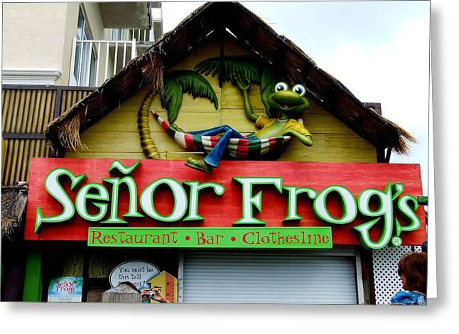 Senor Frogs Greeting Card by Michiale Schneider
