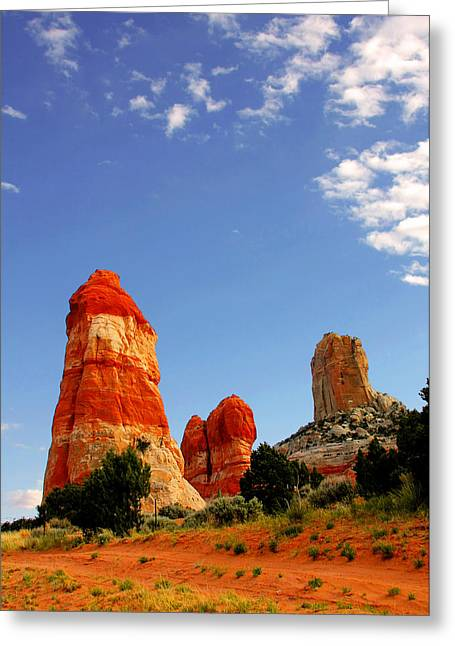 Sensuous Sandstone Greeting Card by Christine Till