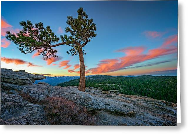 Sentinels Greeting Cards - Sentinel Dawn Greeting Card by Rick Berk