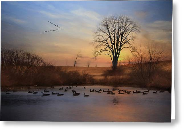 Canadian Geese Greeting Cards - Sentinels of Spring Greeting Card by Lori Deiter