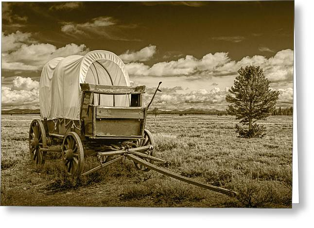 Schooner Greeting Cards - Sepia Colored Frontier Prairie Schooner Covered Wagon Greeting Card by Randall Nyhof