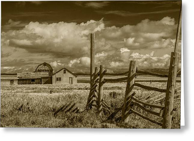 Brown Toned Art Greeting Cards - Sepia Colored Image of the John Moulton Farm on Mormon Row Greeting Card by Randall Nyhof