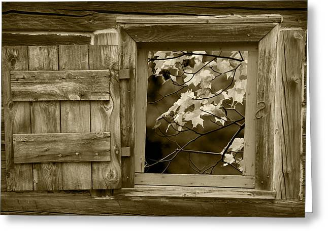 Brown Toned Art Greeting Cards - Sepia Photo of Fall Leaves viewed through a Barn Window Greeting Card by Randall Nyhof