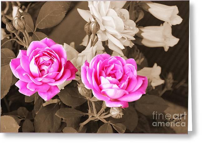 Les Fleurs Greeting Cards - Sepia Pink Roses Greeting Card by Linda Troski