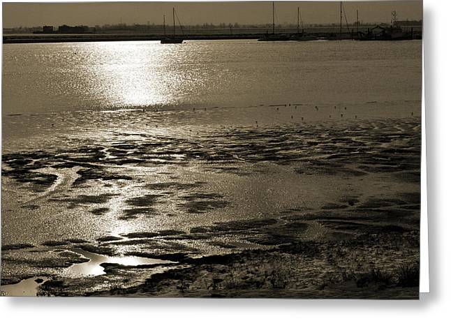 River Scenes Greeting Cards - Sepia River Greeting Card by Terence Davis