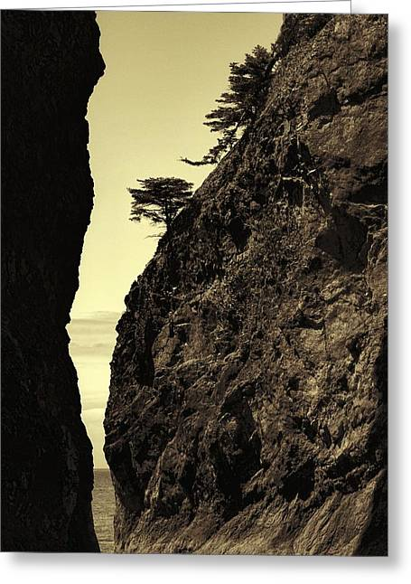 Sepia Sea Stack Contrast Greeting Card by Dan Sproul