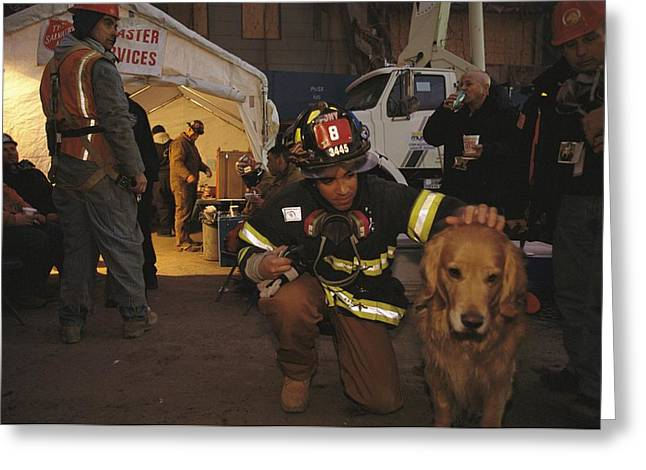 Animal Shelter Greeting Cards - September 11th Rescue Workers Receive Greeting Card by Ira Block