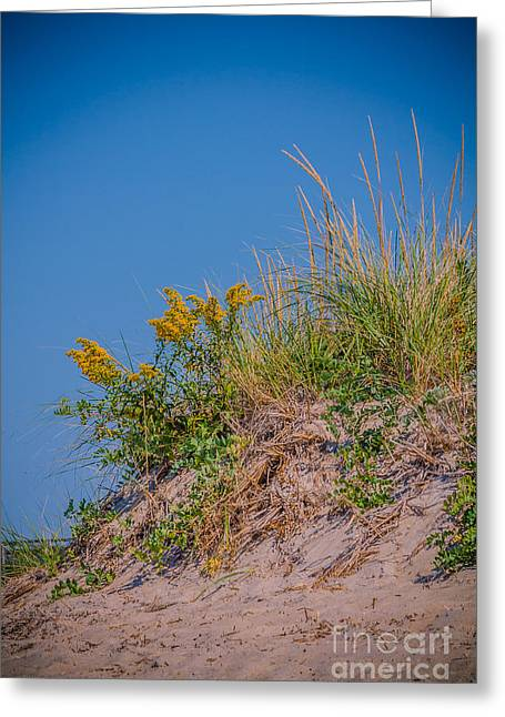 New England Ocean Greeting Cards - September beach Greeting Card by Claudia Mottram