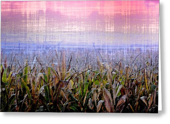 Cornfield Digital Art Greeting Cards - September Cornfield Greeting Card by Bill Cannon