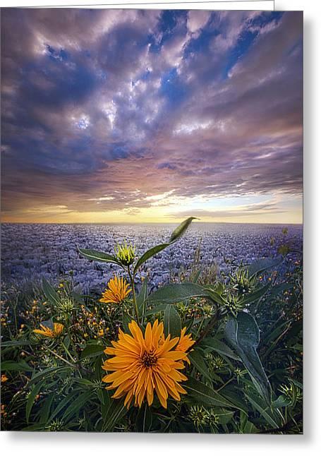 September Equinox Greeting Card by Phil Koch