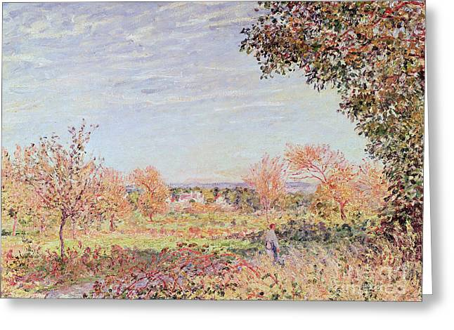 September Greeting Cards - September Morning Greeting Card by Alfred Sisley