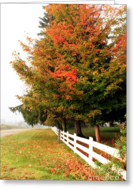 Fallen Leaf Greeting Cards - September Morning Greeting Card by Cathy  Beharriell