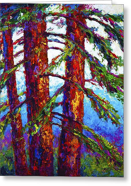 Fall Trees Greeting Cards - Sequoia Greeting Card by Marion Rose