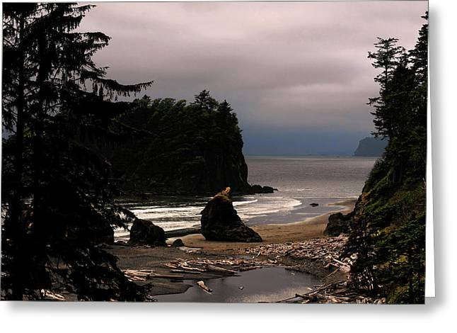 Haze Photographs Greeting Cards - Serene and pure - Ruby Beach - Olympic Peninsula WA Greeting Card by Christine Till