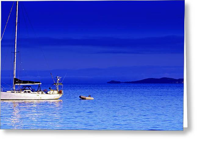 Whitsunday Greeting Cards - Serene Seas Greeting Card by Holly Kempe