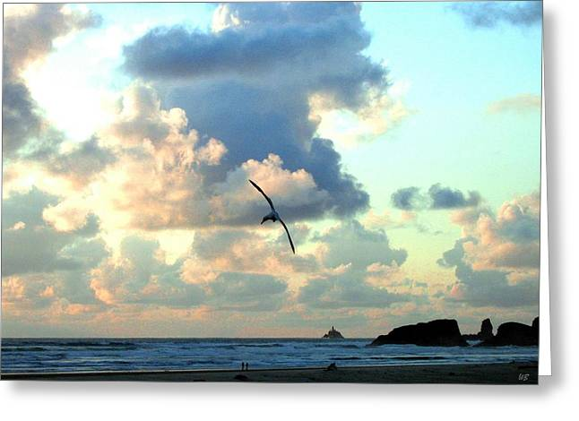 Serene Sunset Greeting Card by Will Borden