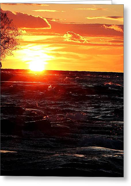 Amazing Sunset Greeting Cards - Serenity In Solitude Greeting Card by Celestial  Blue