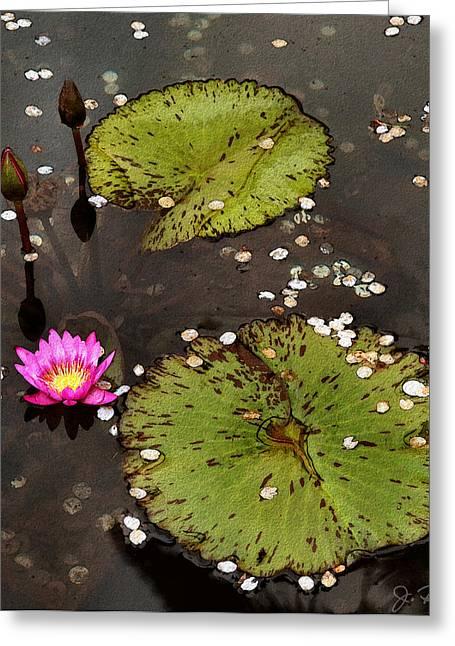 Serenity Greeting Card by Joe Bonita