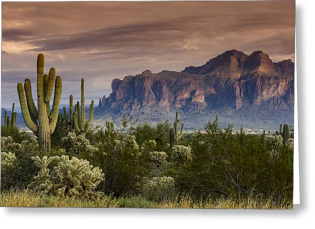 Serenity Of The Sonoran  Greeting Card by Saija  Lehtonen