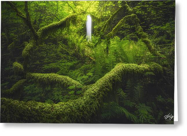 Eagle Creek Greeting Cards - Serenity Greeting Card by Peter Coskun
