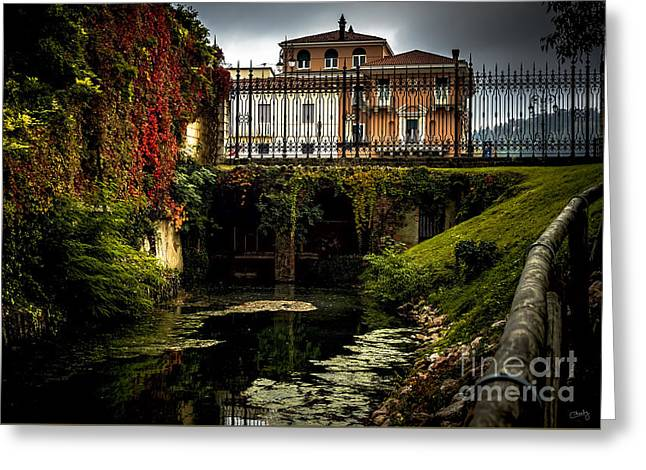 Charly Greeting Cards - Seriola with Autumn Colors Greeting Card by Prints of Italy