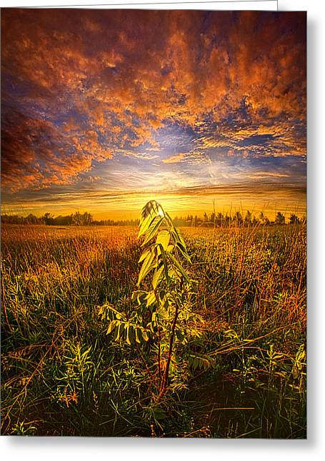 Wisconsin Barn Greeting Cards - Set Free Greeting Card by Phil Koch