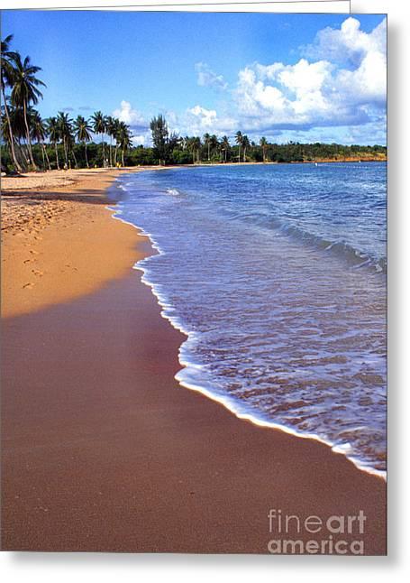 Seven Seas Beach Greeting Card by Thomas R Fletcher