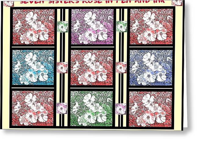 Flower In Pen And Ink Greeting Cards - Seven Sisters Rose in Pen and Ink Poster Greeting Card by Marian Bell