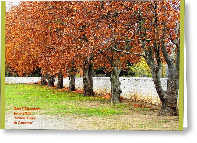 Abstract Digital Pastels Greeting Cards - Seven Trees in Autumn Ha  Greeting Card by Gert J Rheeders