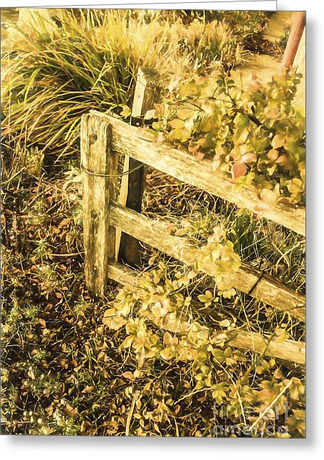 Shabby Garden Details Greeting Card by Jorgo Photography - Wall Art Gallery